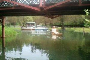 cedar strip kayak canoe